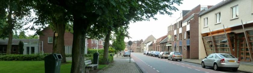 Biest vanaf park richting Philips van Hornestraat