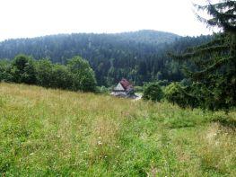 2011_Bieszczady_Lopiennik_06