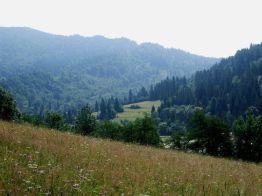 2011_Bieszczady_Lopiennik_07