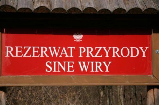 sine_wiry_2012_s.sznajder_04
