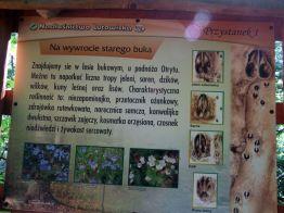Bieszczady_Otryt_2012_007