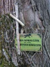 Zernica_Wyzna_cerkiew_17
