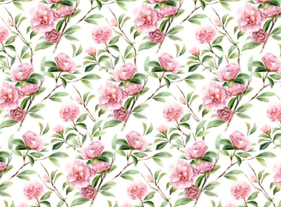 Camellia Pattern Kateryna Savchenko