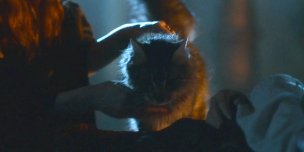 ...Oh Ser Pounce, only you could have saved him...