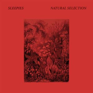 sleepies-natural-selection-cover