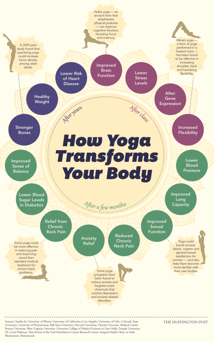 How yoga transforms your body infographic - beginners yoga