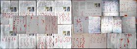 又有939人再度聯名呼籲營救唐山李姍姍