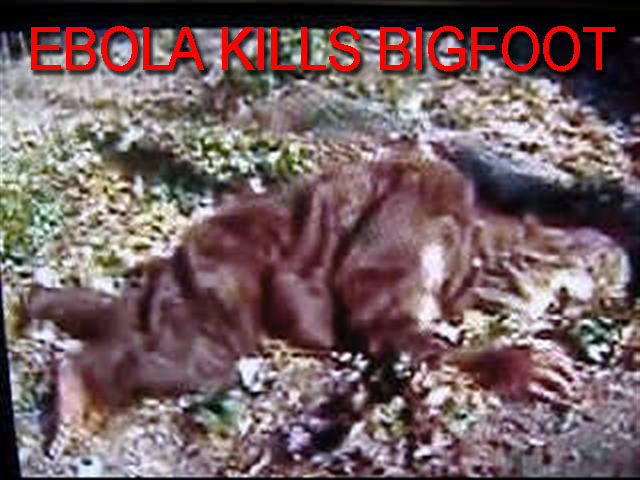 ebola big foot