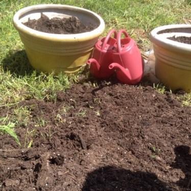 Bag of potting soil