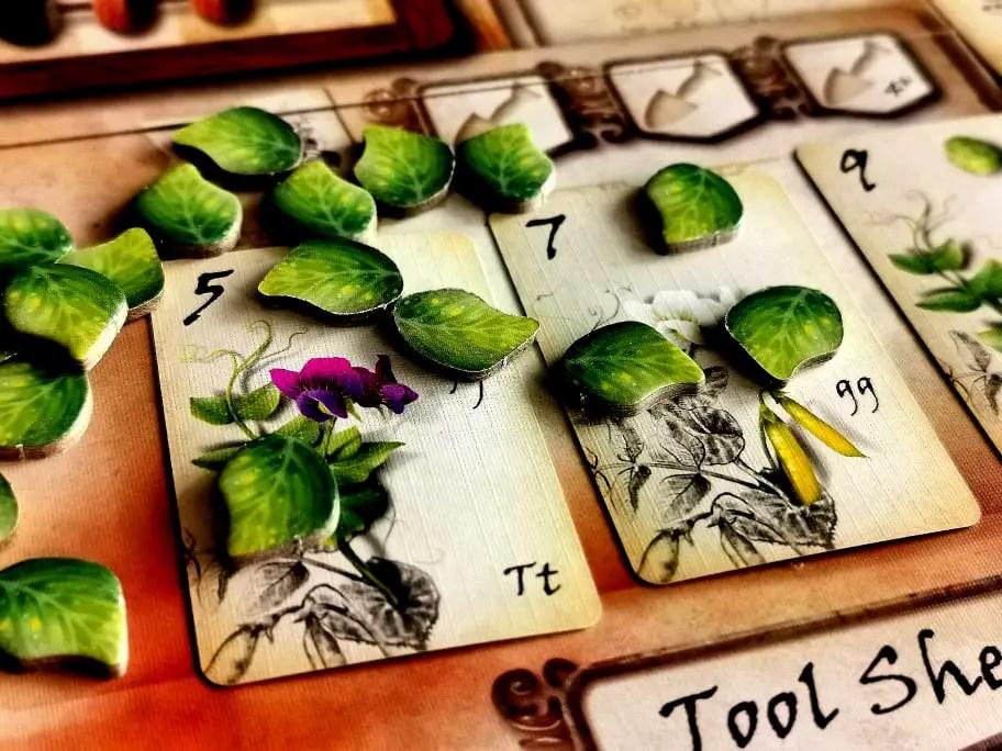 Genotype - karty roślin