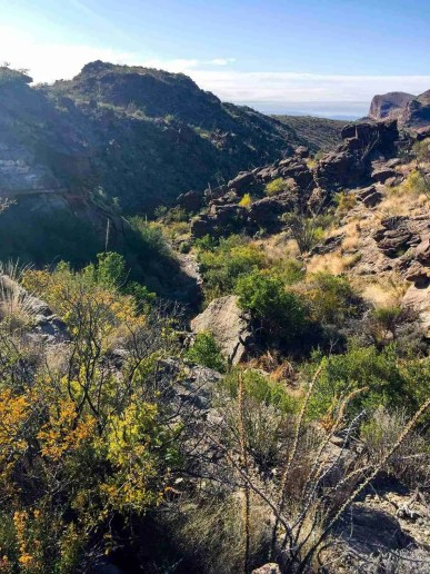 descent the upper burro mesa trail hike