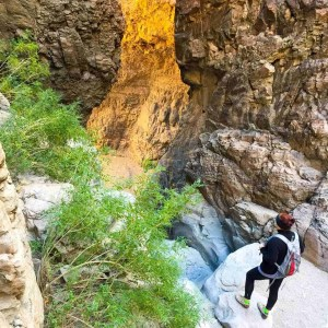 Peering into the Upper Burro Mesa Pour Off