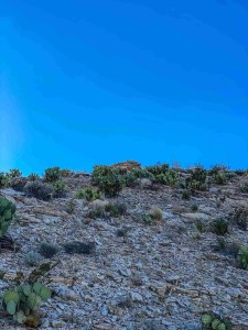 hidden discoveries at Hot Springs District at Big Bend National Park