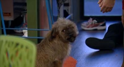 Big Brother 2014 Spoilers - Izzy