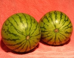 A pair of melons