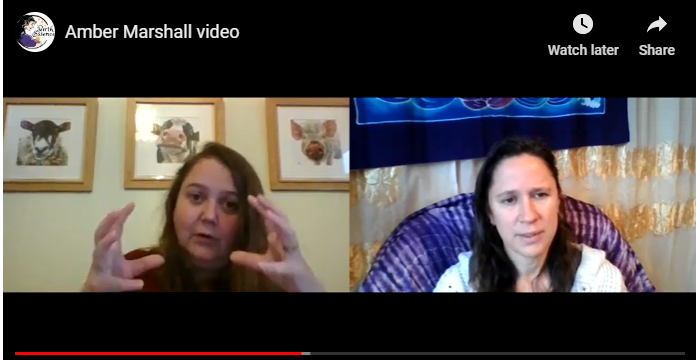 Screenshot of Amber Marshall - founder of BigBirthas talking to Charlotte Kanyi of BirthEssence at the Birth Confidence Summit