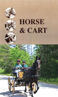 DVD: Horse and Cart