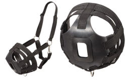 Miniature horse combination web halter grazing muzzle.  This muzzle helps control overeating in miniature horses.