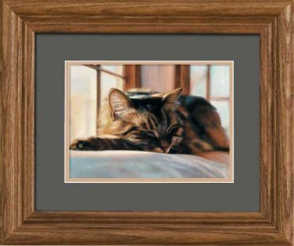 Sleeping Kitten Frame Art