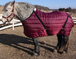Pony stable blanket (draft horse shown)