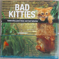 Bad Kitties Book