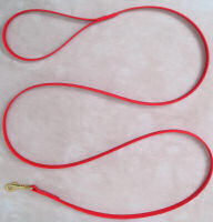 4' Beta Dog Leash