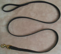 6' Beta Dog Leash 3/4""