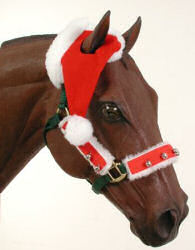 One Eared Santa Cap