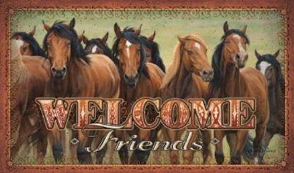 Welcome Friends Mat