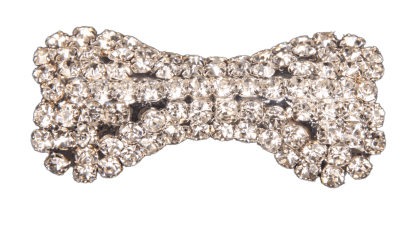 Pin Art Dog Bone Crystal Pin