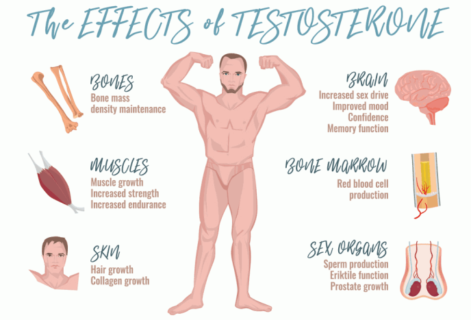 5 Effective Muscle Building Tips