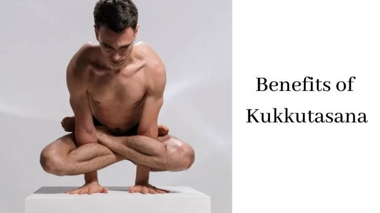 Benefits of Kukkutasana Images