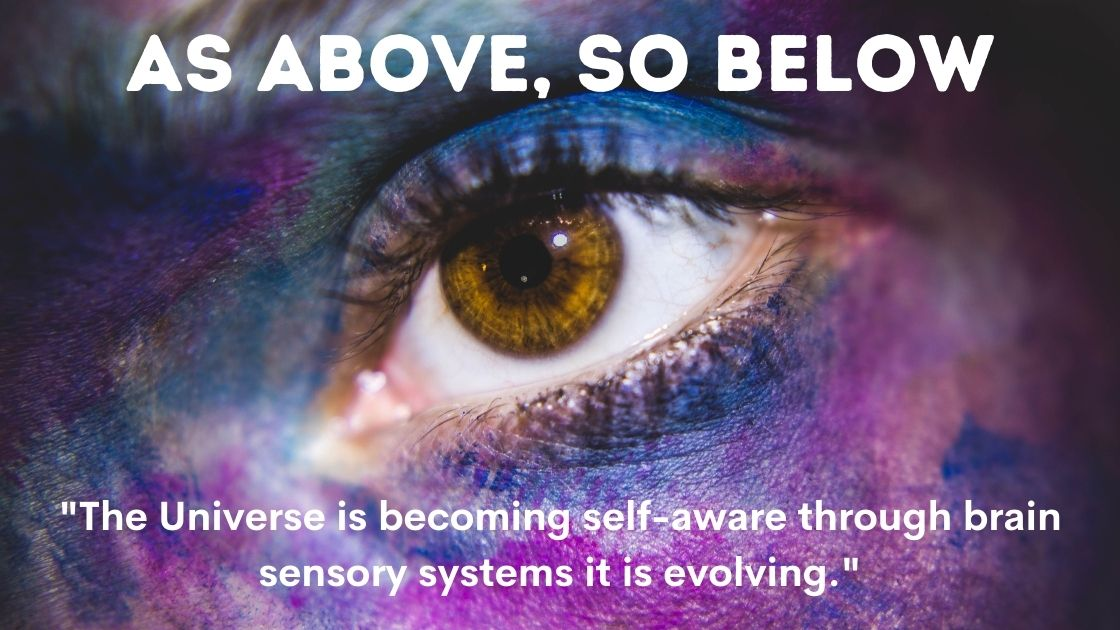 5d Consciousness Quotes Images