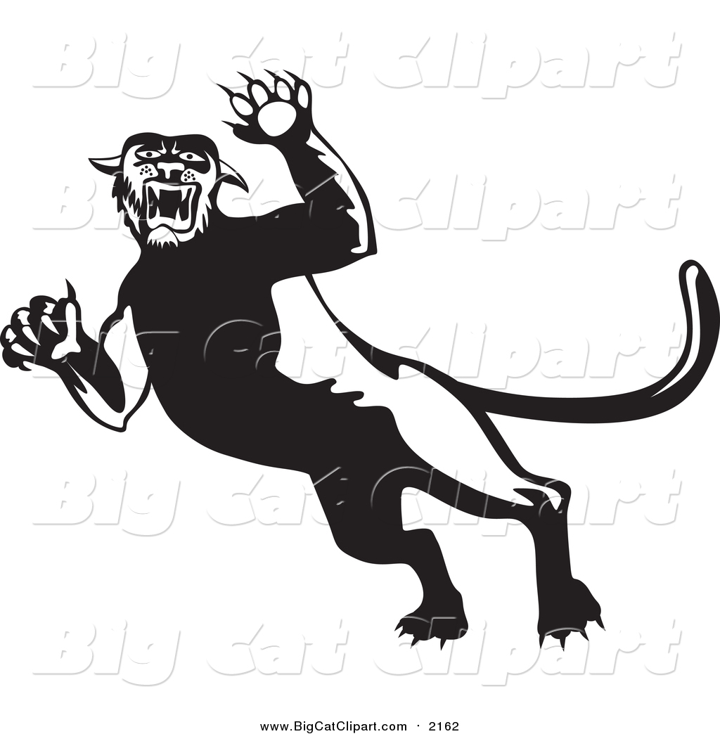 Big Cat Clipart