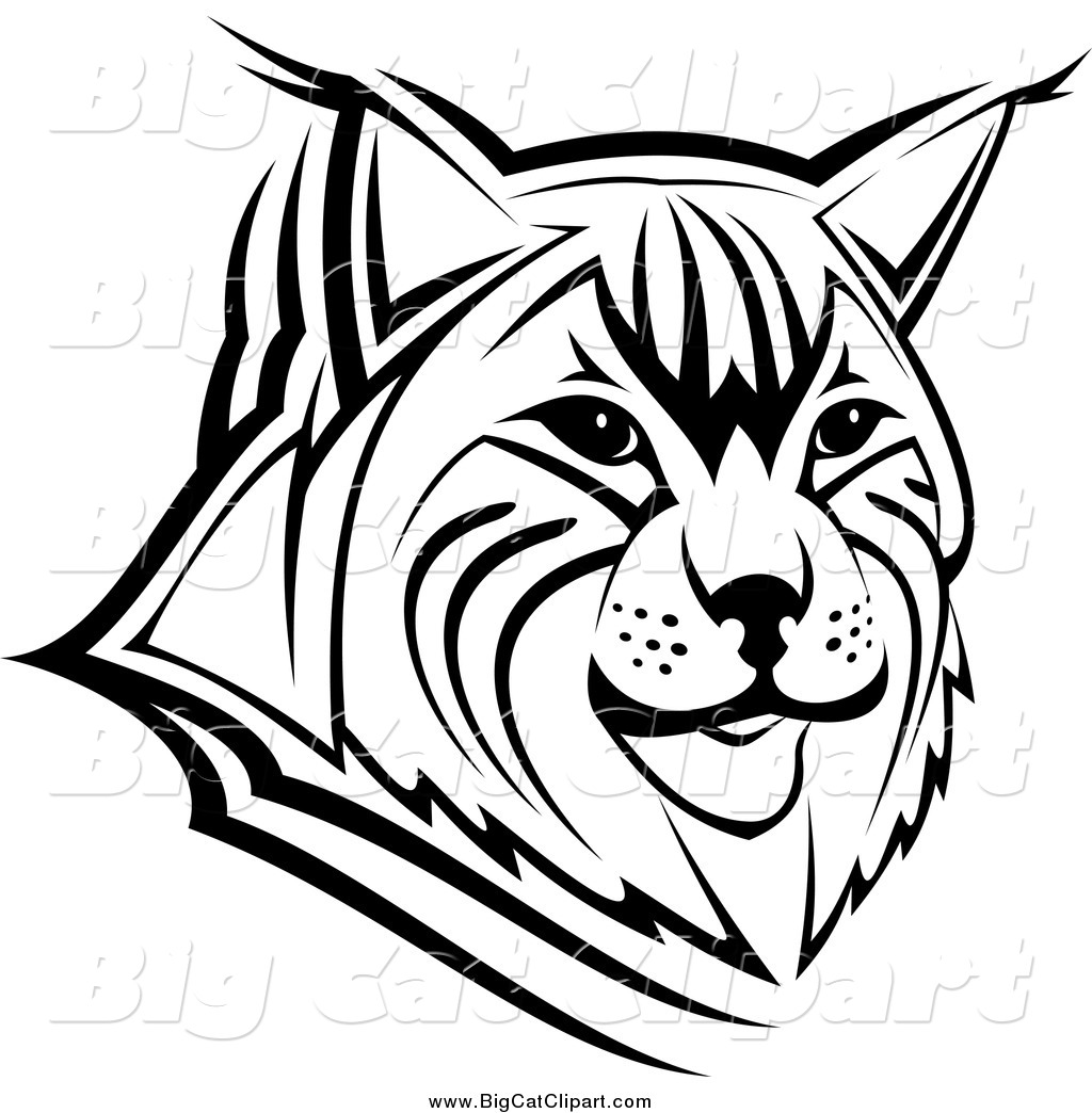 Big Cat Vector Clipart Of A Black And White Bobcat Face By