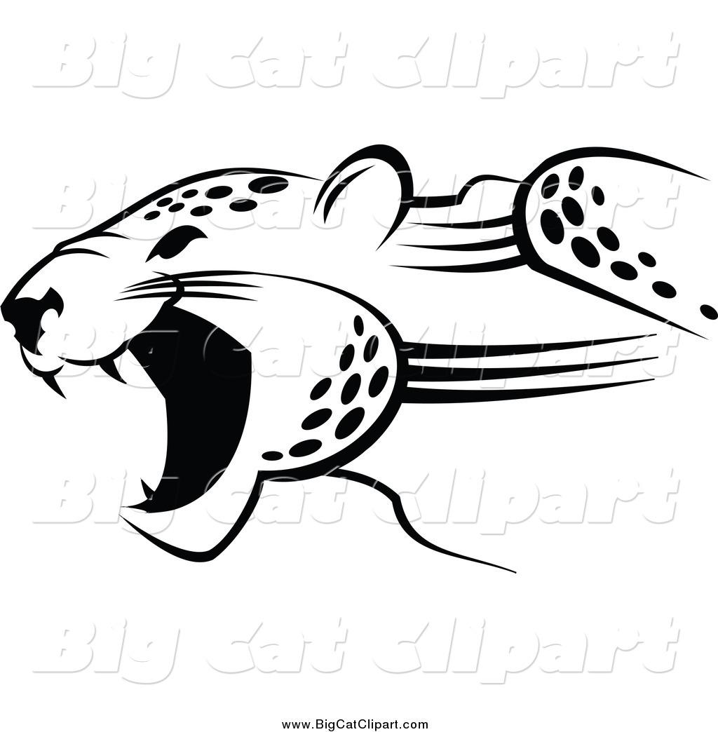 Royalty Free Jaguar Logo Stock Big Cat Designs