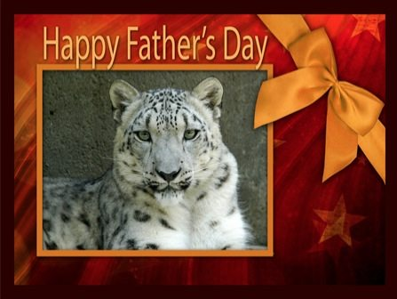 Fathers Day Card Snow Leopard