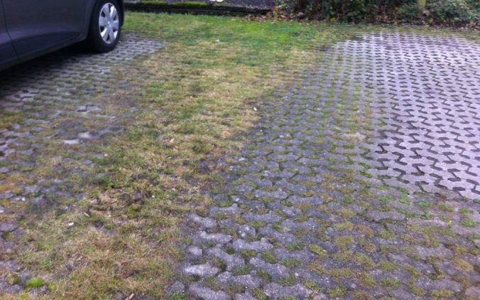 "Green pavers in Denmark - also known as ""græsameringstein"""