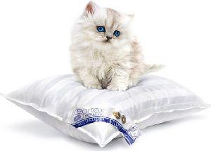 Чистим перьевые подушки