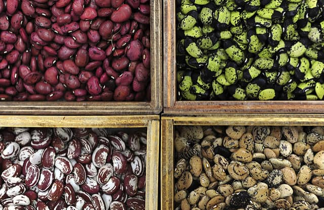 Here's how to do bean breeding the climate-smart way