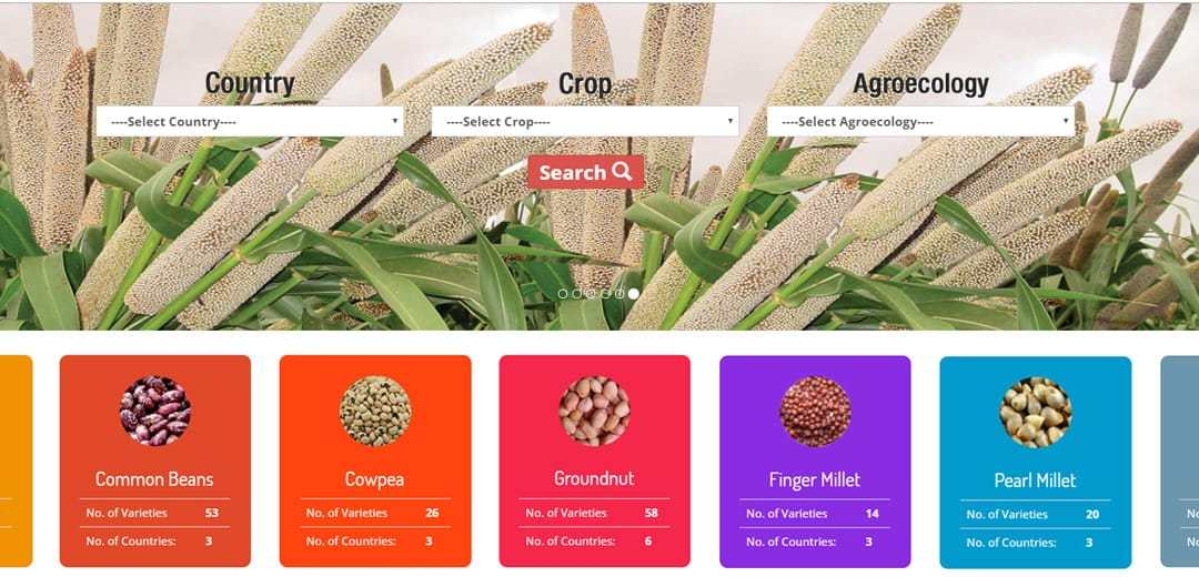 Now, get critical seed data in one click