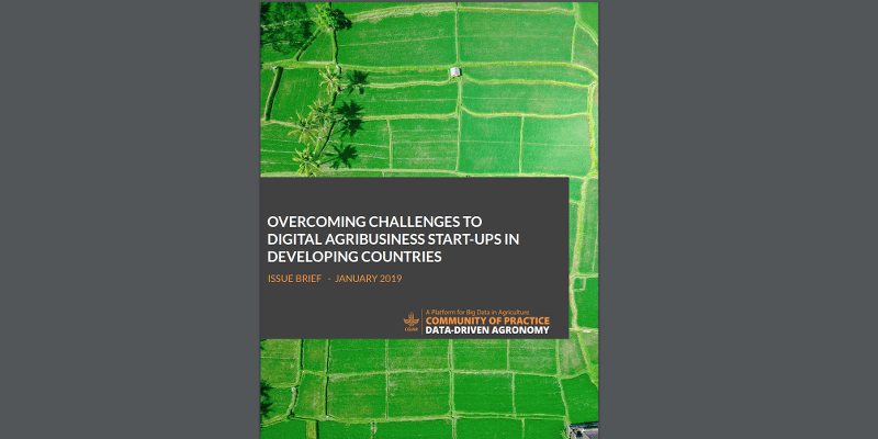 Issue Brief & Video - Overcoming Challenges to Digital Agribusiness Start-Ups in Developing Countries