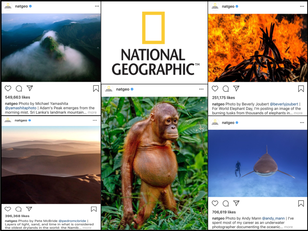 How National Geographic Used Analytics to Become the Biggest Brand on Instagram