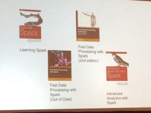Holden Karau Spark Books