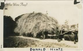 made hay