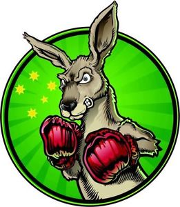 boxing roo