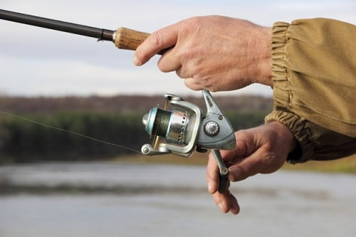 Have a Hold on your Reel