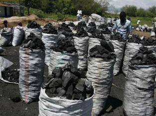 BULK CHARCOAL SUPPLIERS WANTED