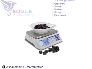 Industrial electronic digital weighing scales