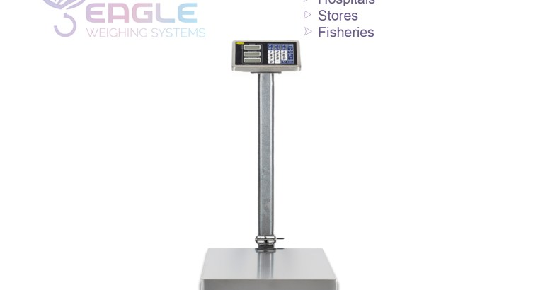 New model electronic scale digital platform scales